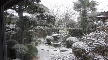 ホワイトクリスマスDSC00463.JPG
